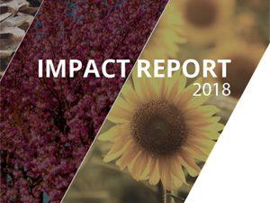 CFSOMD Impact Report 2018